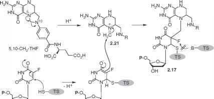 Mechanism Action