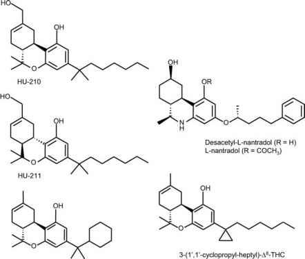 cannabinoid receptor agonists cannabinoid receptor drug times