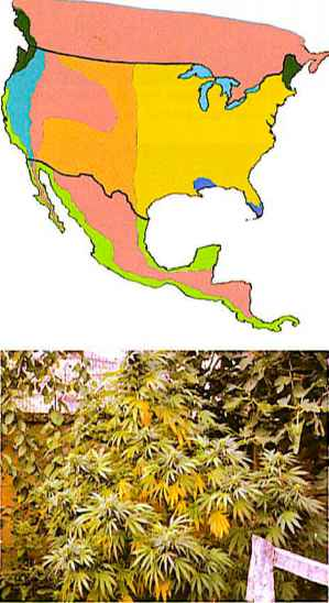 Climate Zones For Drug