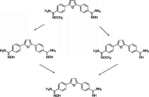Small Molecule Drugs